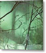 Twigs Shadows And An Empty Beer Jug Metal Print