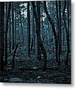 Twilight In The Smouldering Forest Metal Print