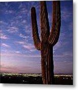 Twilight View Of A Saguaro Cactus Metal Print