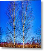 Twin Trees At South Platte Park Metal Print