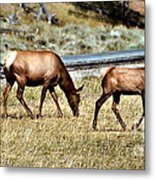 Twins And Mother Metal Print