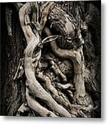 Twisted Dreams Metal Print by Mary Machare