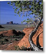 Twisted Tree Monument Valley Metal Print