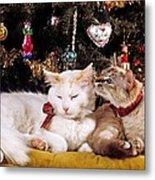 Two Cats At Christmas Metal Print