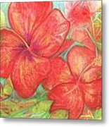 Two Hibiscus Blossoms Metal Print