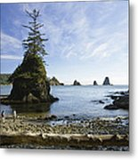 Two Hikers Walk On Beach With Sea Metal Print