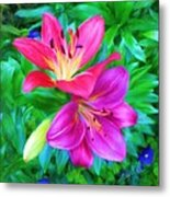 Two Lily Flowers Metal Print