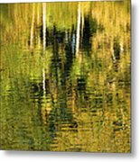 Two Palms Reflected In Water Metal Print by Rich Franco