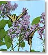Two Swallowtails Metal Print