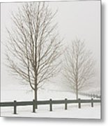 Two Trees And Fence In Winter Fog Metal Print