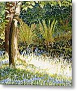 Sunlit Bluebells Llanina Ceredigion Metal Print