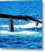 Two Whale Tails Metal Print