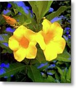 Two Yellow Flowers Metal Print