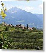 Tyrolean Alps And Vineyard Metal Print