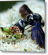 Ugly Bug Feast 2 Metal Print