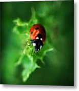 Ultra Electro Magnetic Single Ladybug Metal Print