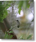 Under The Canopy Metal Print