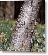 Under Tree Metal Print