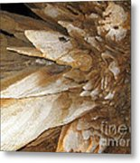 Underground Wonders. Luray Caverns Va Metal Print