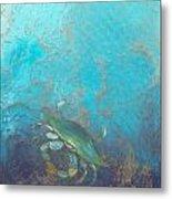 Underwater Blue Crab Metal Print