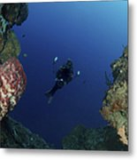 Underwater Photographer At The Entrance Metal Print