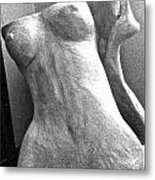 Undressed In Black And White Frontal View Metal Print