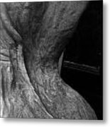 Undressed In Black And White Metal Print
