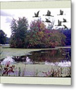 Unicorn Lake - Geese Metal Print