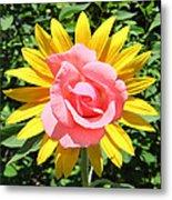 Unique Sun Rose Metal Print
