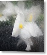 Unmarred Metal Print