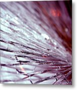 Unsettled Mind Metal Print