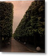 Untitled #4046 Metal Print
