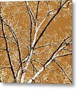 Untitled Tree Metal Print by Carrie Kouri