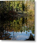 Up Down Beauty All Around Metal Print