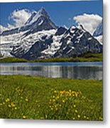 Up In The Bernese Alps Metal Print