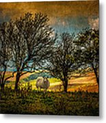 Up On The Sussex Downs In Autumn Metal Print