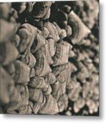 Up The Mushroom Tree Metal Print