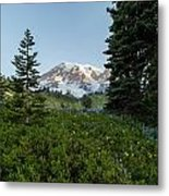Upon A Hill Of Flowers Metal Print