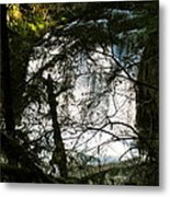 Upper Butte Creek Falls Through The Trees Metal Print