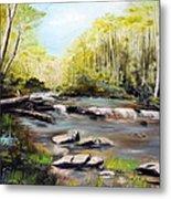 Upstate South Carolina Trout Stream Metal Print