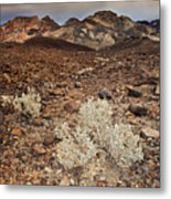 Usa, California, Death Valley, Barren Landscape Metal Print