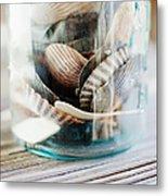 Usa, New York State, New York City, Brooklyn, Shells In Jar Metal Print by Jamie Grill