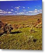 Valley At Fossil Butte Nm Metal Print