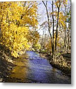 Valley Forge Creek In Autumn Metal Print
