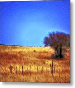 Valley San Carlos Arizona Metal Print