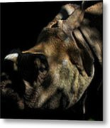 Vanishing Into The Darkness Metal Print by Anthony Wilder