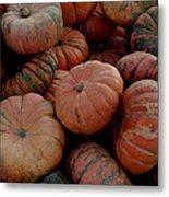 Varied Pumpkins Metal Print