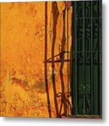 Verde Jaula Metal Print by Skip Hunt