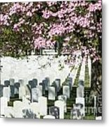 Veterans National Cemetery Metal Print