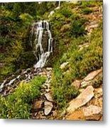 Vidae Falls Landscape Metal Print
